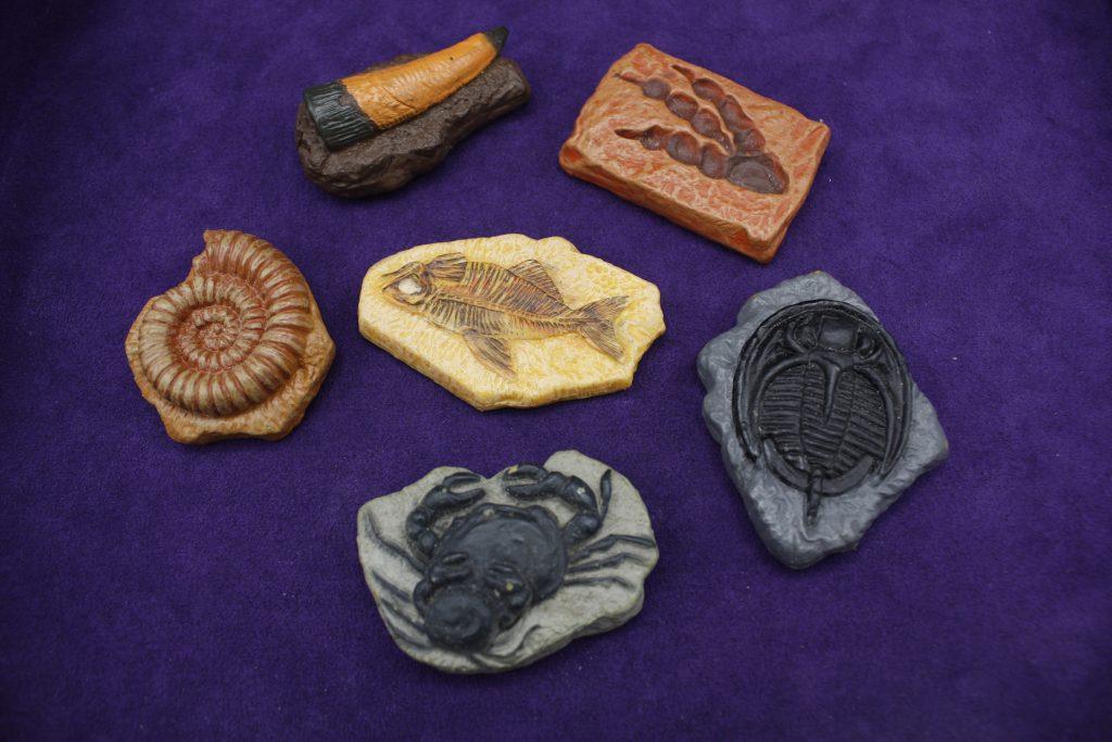 Fossiilit, lasten pakopeli, dinolaakso, dinosaurus pakopeli